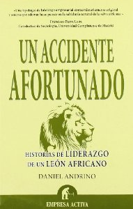 Portada de UN ACCIDENTE AFORTUNADO
